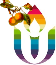 Harvard Unitarian Universalist Church Logo